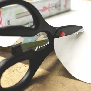 Euro Scissors